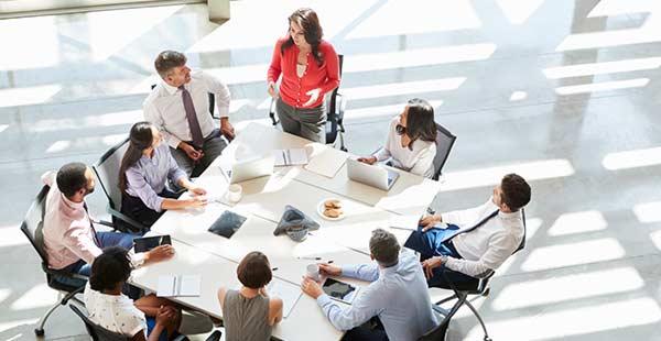 ALOXI - Comités y Grupos de trabajo